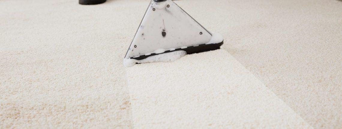 Carpet Cleaning Fredericksburg Va Area Free Quotes